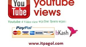 Earn From Youtube Video view